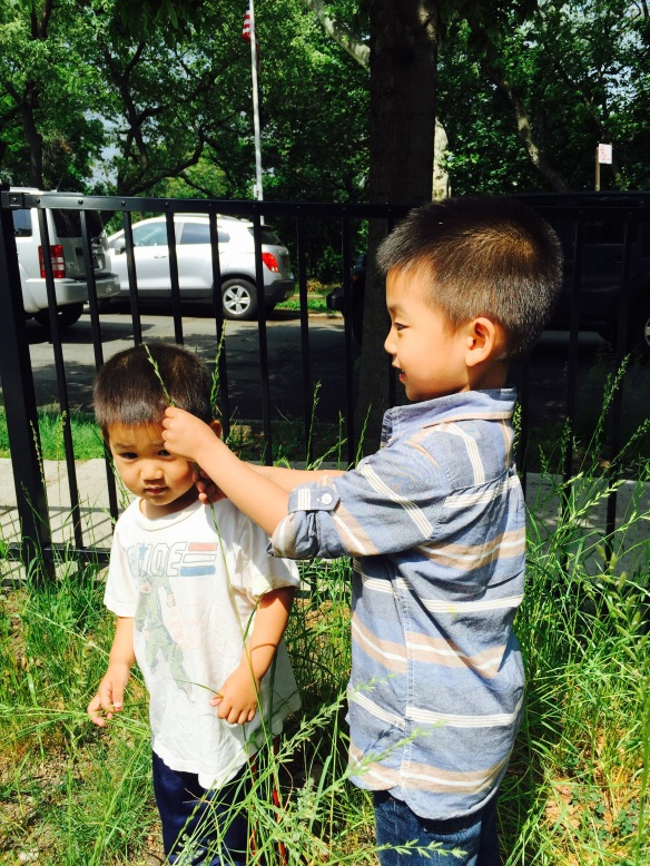 """Ellis, you're growing up fast but this weed is still taller than you."""